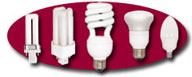 Click To View Our Large Selection Of Compact Fluorescent Lamps!