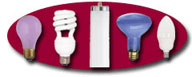 We have the Largest Selection Of FULL SPECTRUM Lamps On The Internet! Click For More Details!